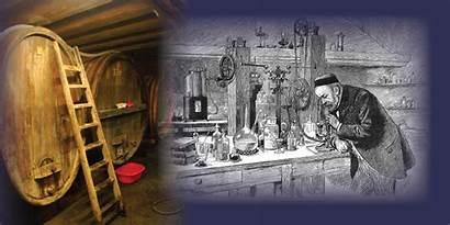 Fermentation History