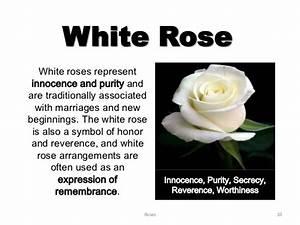 Meanings of Roses – WeNeedFun