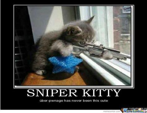 Sniper Memes - image gallery sniper kitty