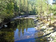 Yosemite Lakes