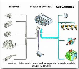 Sistema Electr U00f3nico  Qu U00e9 Es Y Sus Tipos De Aver U00edas