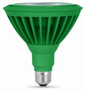 Led par green flood light bulbs come in bright color