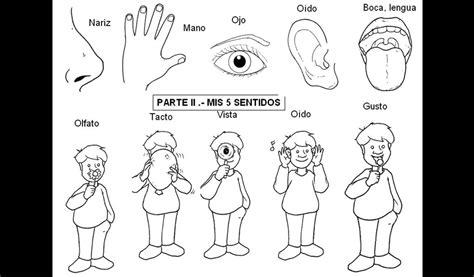 NUESTROS 5 SENTIDOS PUERTAS DEL TEMPLO DE DIOS (NUESTRO