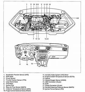 Kia Rio Sedona Sorento Engine Diagram  Kia  Free Engine