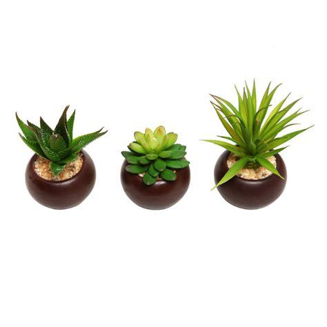 potted artificial mini succulent plants set