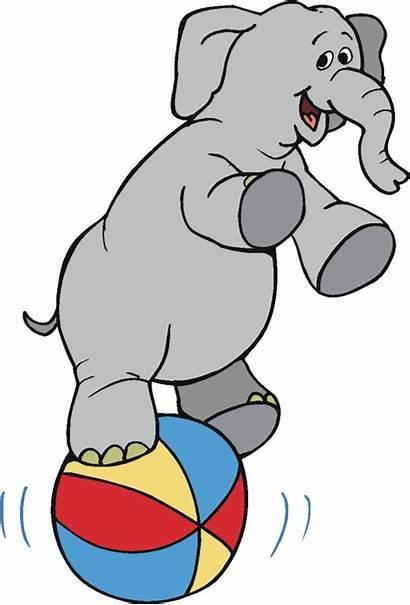 Circus Clipart Animal Elephant Clip