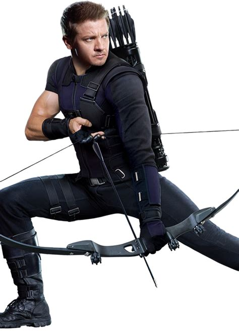 Hawkeye Transparent Images Pictures Photos Arts