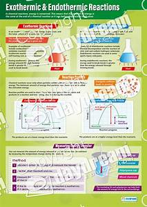 Exothermic  U0026 Endothermic Reactions  U2013 Science Poster