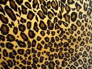 Amazing Leopard Print