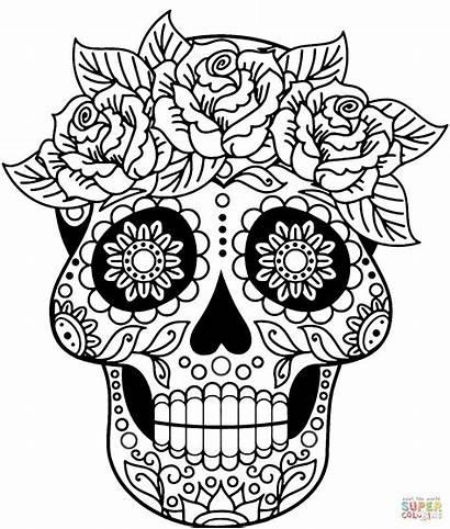 Coloring Skull Sugar Pages Printable Supercoloring Drawing