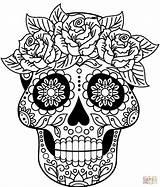 Coloring Skull Sugar Pages Printable Drawing Supercoloring Colorings sketch template