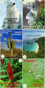 95 Best Images About Ecology And Trophic Levels On