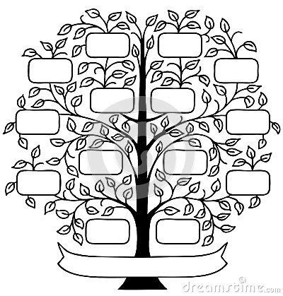 family tree stock  images pictures