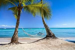 photography, Landscape, Nature, Tropical, Beach, Palm ...