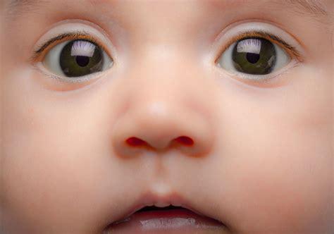 neonato in cura e salute neonato una guida pratica risponde