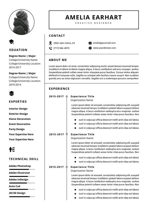 Professional Cv Format In Ms Word by Professional Resume Cv Template Instant Ms