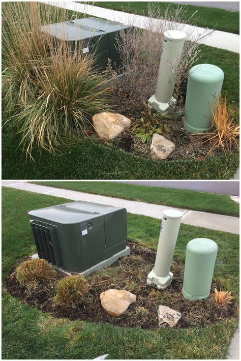 stay green  december heat wave backyard