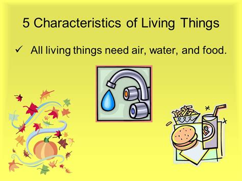 characteristics of cuisine five characteristics of living things ppt