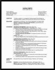 retail sales resumes exles retail sales associate resume sle the best letter sle