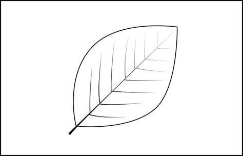 Leaf Template | Printable Leaf Templates | Free & Premium ...