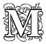 Coloring Alphabet Letter Pages Letters Celtic Fruit Bubble Vegetable Mushroon Monogram Sheet Alphabets Printable Getcoloringpages Coloringpages101 Lettering Mushrooms sketch template
