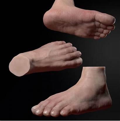 Foot 3d Zbrush Models Male Realistic Obj