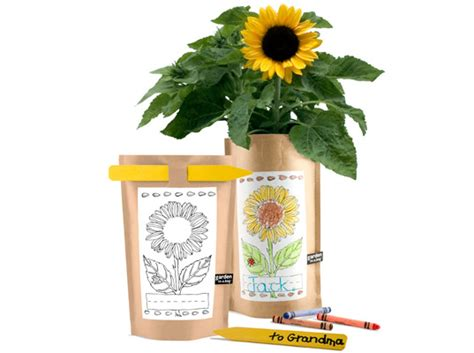 potting shed creations color yourself quot sunflower in a bag quot by potting shed