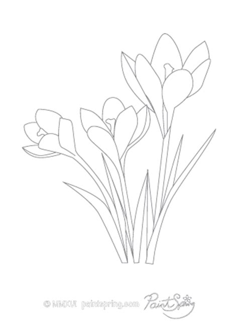 Printable Flower Adult Coloring Book {Get 3 Free Pages}