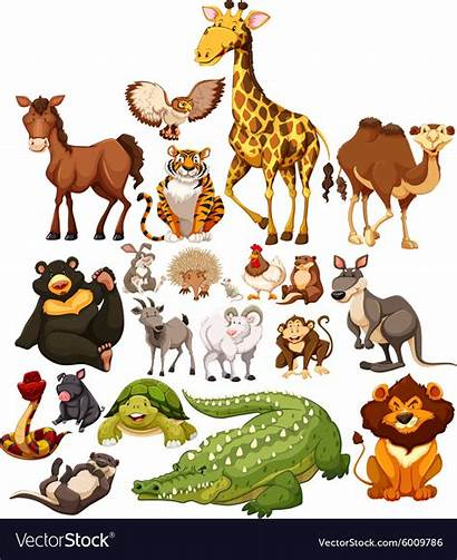 Animals Wild Different Type Vector Royalty