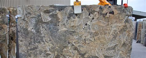 Crazy Horse Granite Countertops   Natural Stone City