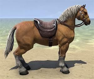ESO Fashion Palomino Horse