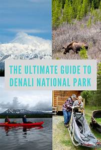 The Ultimate Guide To Visiting Denali National Park