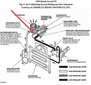 1999 Honda Accord Wiring Diagram
