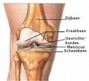 Pijn onder de knie
