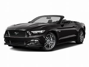 Used 2016 Ford Mustang GT Premium Convertible RWD for Sale (with Photos) - CarGurus