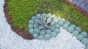Immergrüne Pflanzen Für Kiesbeet : kiesbeet pflanzen gestalten ~ A.2002-acura-tl-radio.info Haus und Dekorationen