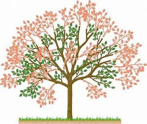 Apfelbaum Wann Schneiden : kirschb ume im sommer schneiden mein sch ner garten ~ Frokenaadalensverden.com Haus und Dekorationen
