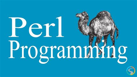 perl programming working  strings youtube
