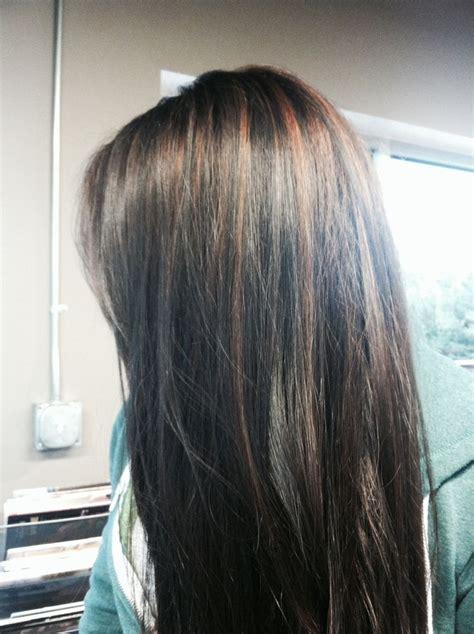 cinnamon brown highlights  dark brownblack hair