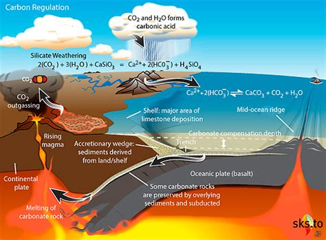 define carbon sink geography understanding the term carbon cycle weathering of
