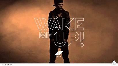 Wake Avicii Pete Wallpapers Rose Electronic Tong