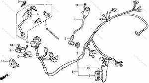 Honda Scooter 1998 Oem Parts Diagram For Wire Harness
