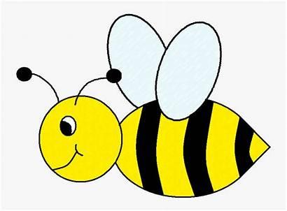 Bee Bumble Clip Clipart Bees Transparent Native