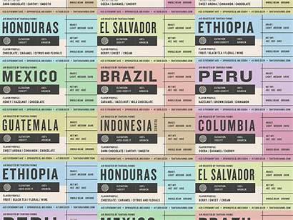Coffee Packaging Labels Label Single Origin Dribbble