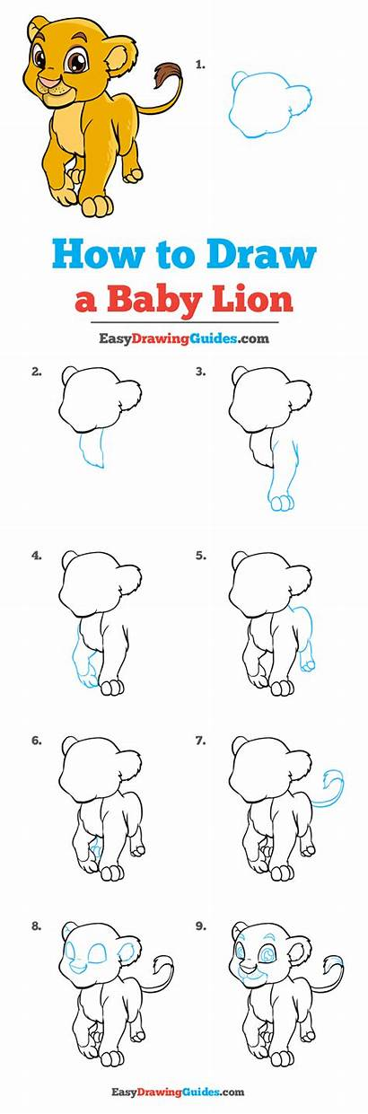 Lion Draw Drawing Easy Tutorial Easydrawingguides Step