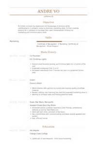 co founder resume sle co founder resume exle