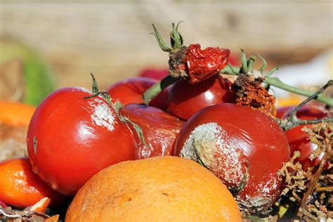 สารปนเปื้อนในอาหาร อันตรายรู้ก่อนเลี่ยงก่อน   HD สุขภาพดี ...