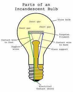 How Incandescent Light Bulbs Work  U2014 1000bulbs Com Blog