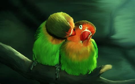Love Birds Wallpapers High Quality   Download Free