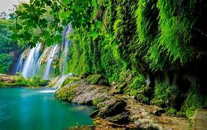 green, tropical, forest, waterfall, lake, landscape, nature, 4k